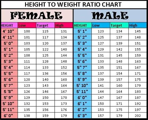 Height To Weight Chart  Things To Know References For