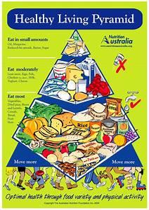 a brief history of the pyramid nutrition australia