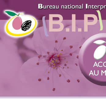le site du pruneau d agen bip bureau national interprofessionnel du pruneau accueil