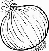 Coloring Onions Pages Printable Coloringbay sketch template