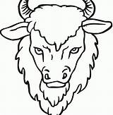 Buffalo Water Coloring Template sketch template
