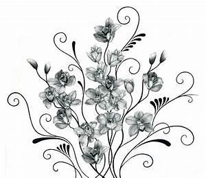 Drawn Black And White Orchids Pictures to Pin on Pinterest ...