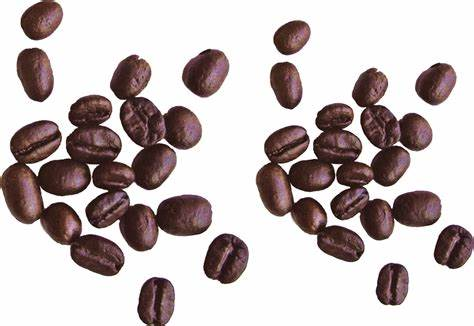 Coffee , thin line icons set ,pixel perfect icon. Coffee Beans PNG Picture   Web Icons PNG