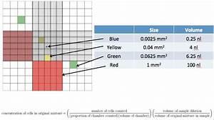 Lab Skills Quiz  U2013 Tissue    Cell Culture  U2013 Lants And Laminins