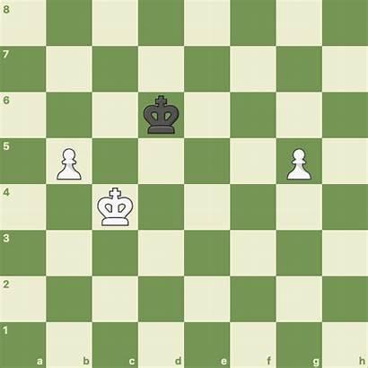 Chess Endgame Endgames Pawn Common King Very