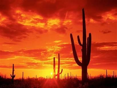 Arizona University Desktop Wallpapers State Az