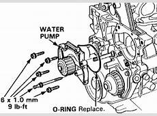 Water Location Honda Civic 1997 Pump 2
