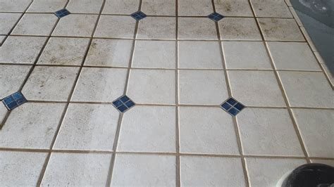 how to clean cat urine from tile grout cats kittens