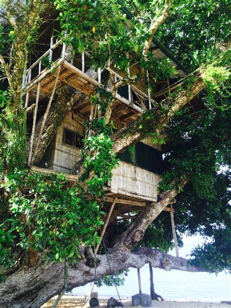 Treehouse Village Resort  Hotel Reviews (papua New Guinea