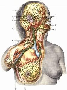 Таблетки от аденомы простатита