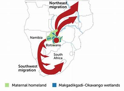 Africa Humans Years Southern Ago Maternal Ancestors