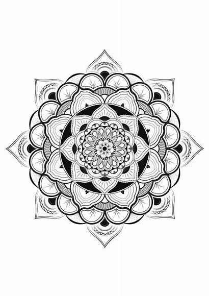 Mandala Coloring Pages Flower Mandalas Pretty Adults