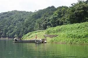 Viajar a Darién, Tours en Darién, Paquetes Turísticos en Darién, Viajar a Panamá PanamaTopTravel