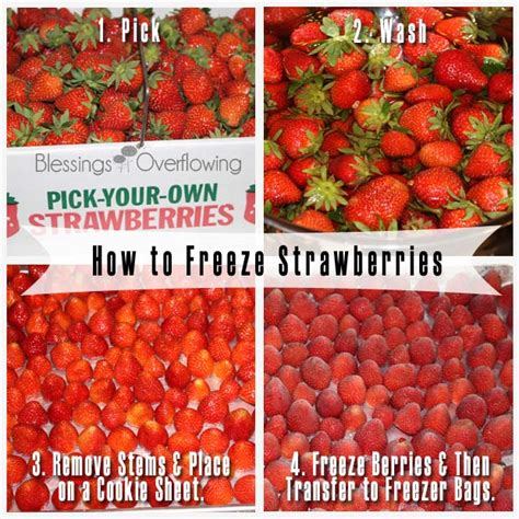 how to freeze strawberries how to freeze strawberries