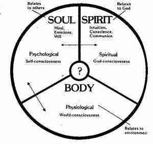 Brief Explanation Of Spirit  Soul And Body