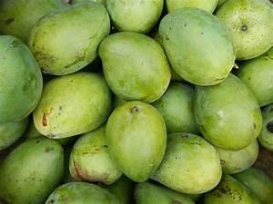 14 Health Benefits Of Green/ Raw Mango - Boldsky.com