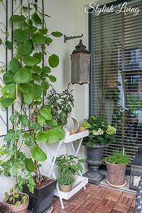 Kletterpflanzen Für Balkon : balkonbegr nung und kletterpflanzen die jede wand glamour ser aussehen lassen stylish living ~ Buech-reservation.com Haus und Dekorationen