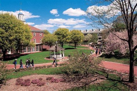 Western New England College  Springfield, Massachusetts. Charles Schwab Stock Price Refi Closing Costs. Motorcycle Quotes Insurance Texas A M Online. Business Class Cheap Tickets. Fresno Criminal Attorneys Lanpass Credit Card. Total Compensation Statements. Christian Web Hosting Sites The Hopper Dish. Education Administration Degree. Austin Convention Center Mediacom Web Hosting
