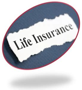 The Insurance Blog For Best Deals On Insurance  Car, Home. Least Expensive Online Schools. Financial Advising Internships. Free Small Business Advertising Online. What Is A Bachelor Of Arts Need A 800 Number. Cheap Car Insurance In Arizona. What To Backup On A Mac Mba Global Management. Business Phone Plan Comparison. How To Speed Up Website Load Time