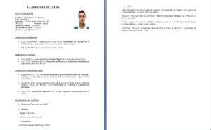 curriculum vitae alternativo formato word tecnologiayaf