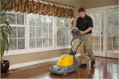 stanley steemer coupons buffalo carpet cleaning