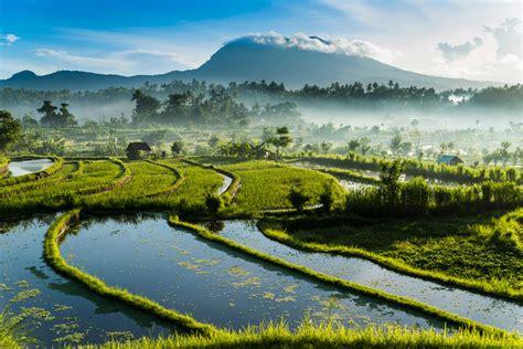 tourist trail  bali    visited spots