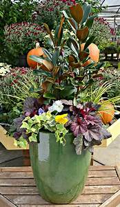 Custom, Plant, Containers, Nc