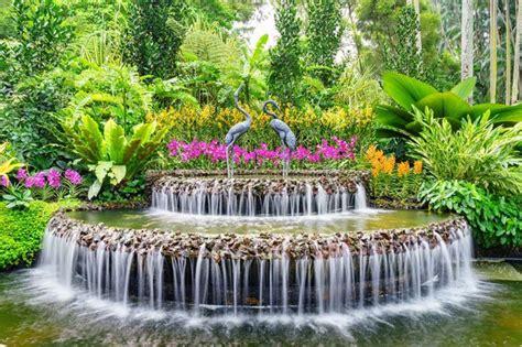 singapore botanic gardens singapore botanic gardens thebestsingapore