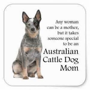 Best 25+ Austra... Australian Mom Quotes