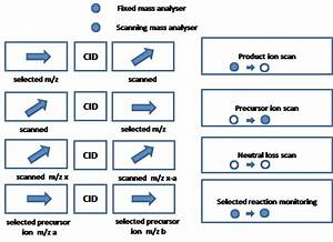 Tandem Mass Spectrometry Main Scan Modes  Cid Stands For