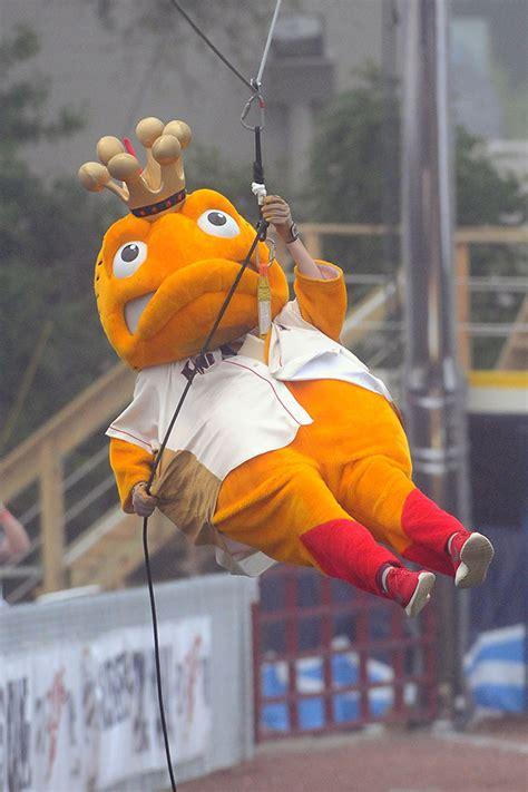Kenosha Kingfish - Big Top Baseball, Wisconsin | Big Top ...