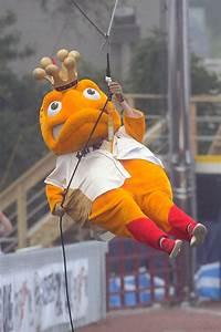 Kenosha Kingfish Big Top Baseball Wisconsin Big Top