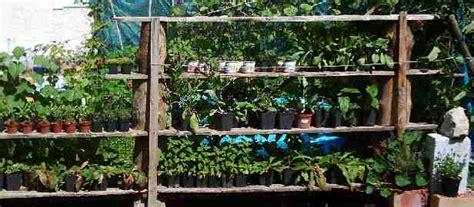 hofladen lo 223 nitz pflanzen naturnaher garten