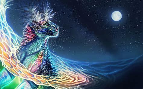 Colorful Cheetah Full Moon Wallpapers  Colorful Cheetah