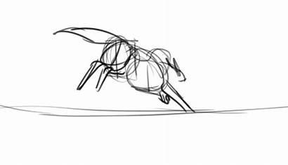 Remarin Sketch Camera Wolf Run Deviantart Animation