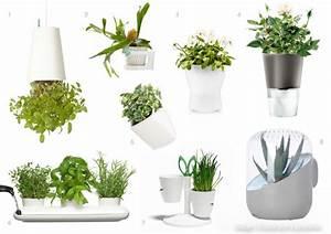Pot De Fleur Mural : design trouver pot sa plante fleurs muraux support ~ Dailycaller-alerts.com Idées de Décoration