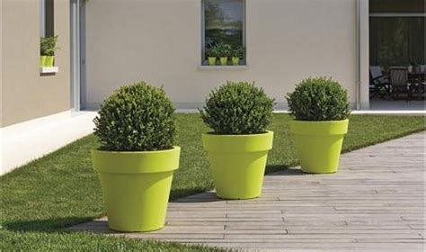 grand pot ikon pour arbuste  plantes dexceptionjarre