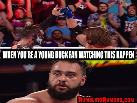 Wwe Wrestling Memes - 6256 best 168 wwe and nxt divas and superstars 168 images on pinterest wwe