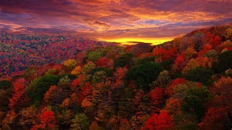 Fall Foliage Wallpaper For Desktop ·① Wallpapertag
