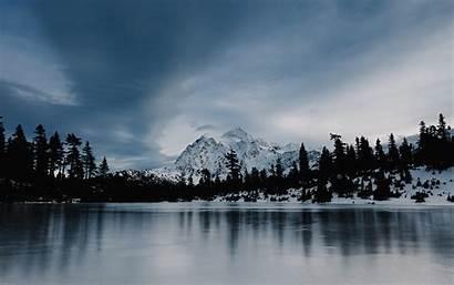 Winter Frozen Forest Lake Snow Wood Desktop