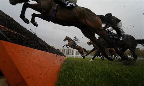 Robin Goodfellow's racing tips: Best bets for Friday ...