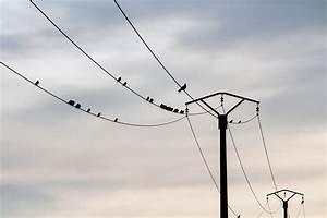 Enfouissement Ligne Electrique Particulier : pourquoi les lignes haute tension ont 3 fils couleur science ~ Melissatoandfro.com Idées de Décoration