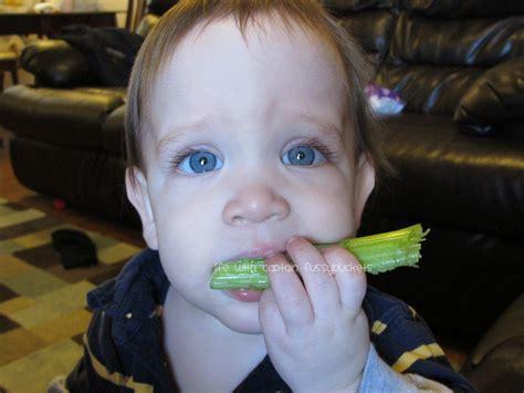Wordless Wednesday Celery
