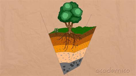 Почва - Човекът и природата 4 клас | academico - YouTube