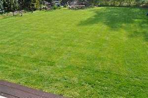 Frisch Gesäten Rasen Düngen : vergleich streuwagen f r rasend nger gardena test ~ Watch28wear.com Haus und Dekorationen