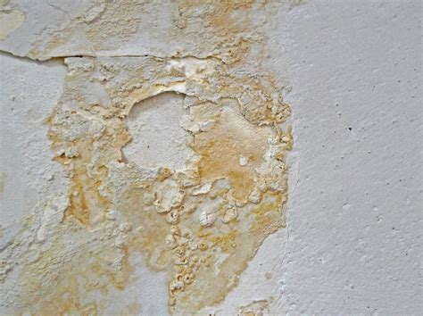 que faire contre l humidité dans une chambre comment éliminer le salpêtre etancheite produits d