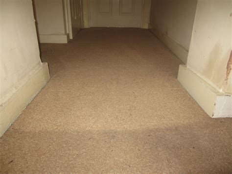 Professional Carpet Cleaning In Croydon mvir Cleaning Carpet Worcester Ma Where Can I Buy A Cleaner Used Commercial Cleaners For Sale Low Moisture Cleaning Stain Remover Living Room Shaw Tile Intellect Garage Squares