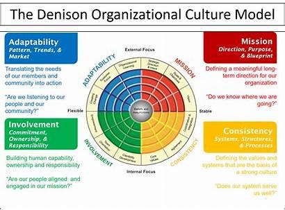 Organizational Cultural Denison Title