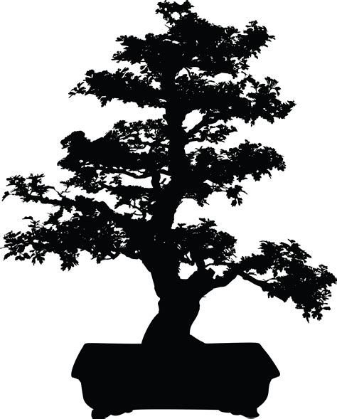 library  japanese tree png black  white stock png