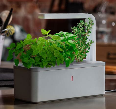 redirecting to news click grow smart herb garden lights